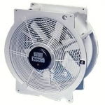 Multifan circulating fan